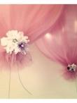 Žavūs balionai šventiniam dekorui