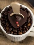 Chocospoon karštas šokoladas