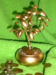 Pasidaryk pats: auksinis pinigų medelis