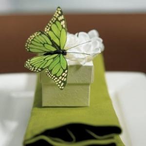 Įkvėpkite namams gyvybės: drugeliai interjere