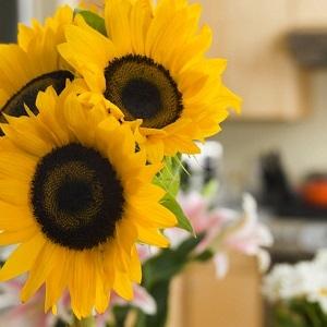 Spalvų ir gėlių simbolika šventiniame dekore